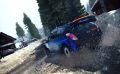 DiRT Rally 14.jpg