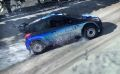 DiRT Rally 17.jpg