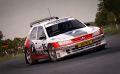 DiRT Rally 40.jpg