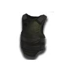 WL2 Kevlar Vest.png
