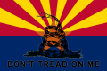 WL2 Arizona Citizens Militia Flag.png