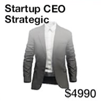 Startup CEO Strategic.png