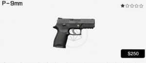 P-9mm.PNG