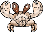 BabyCrabPreview.png