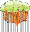 A Lion Mane Jellyfish
