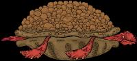 VolcanicTortoiseNoFoliage.png