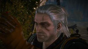 W2 SS Geralt 89.jpg