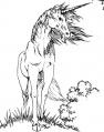 Unicorn RPG.jpg