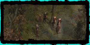 Geralt mit den Scoia'tael