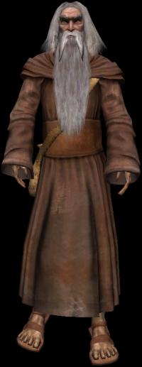 Starszy Druid