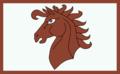Flaga Gemmera.png