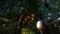 W2 SS Geralt 103.png