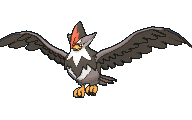 Staraptor Male XY.png