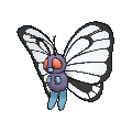 Butterfree Female XY.png