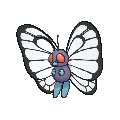 Butterfree Male XY.png