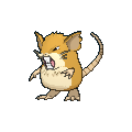 Raticate Female XY.png