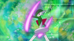 Gallade Use SwordsDance.png