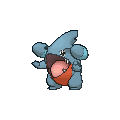 Gible Male XY.png