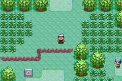 Ruby-Sapphire Route 101 1.png