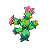 Maractus BW Front.png