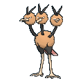 Dodrio Male XY.png