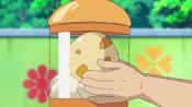 Scraggy Egg.png