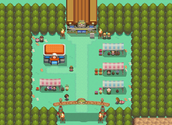 Safari Zone Gate HGSS.png