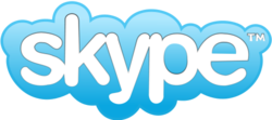 The Skype logo