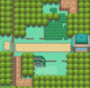 Kanto Route 7.png