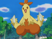 Nurse Joy Combusken.png