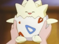 Togepi Season 1.png