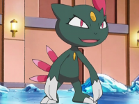 Candice's Sneasel