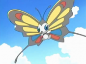 May Beautifly.png