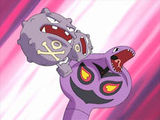 Weezing and Arbok.jpg