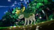 Koharu's Deerling.jpg