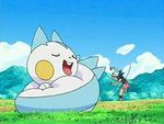 Pachirisu resting in the middle of the day.jpg