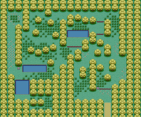 Map of berry Forest