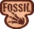 Fossil (TCG).png