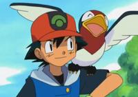 Pokémon Advacned Episode 4.png