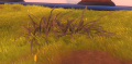 Bulrush, Grass Only (Sienna).png