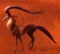 Swifthart stag.png