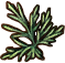 Substances Wolfsbane.png
