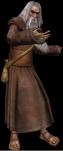 an elder druid