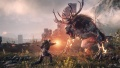 The-Witcher-3-Igni-2.jpg