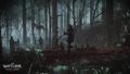 Tw3 e3 2014 screenshot - Nilfgaardian soldiers marching through the forest.jpg