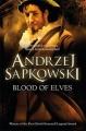 Blood of Elves (Eng 2nd).jpg
