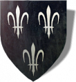 Temerian coat of arms in The Witcher 2
