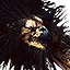 Tw3 bestiary icon gryphon.png