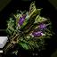 Tw3 hjorts herbs.png