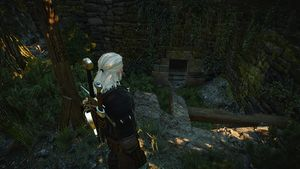 Witcher 3 Dragonslayer's Grotto (2).jpg